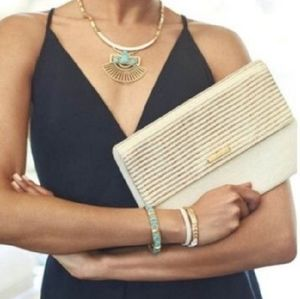 S&D city slim gold stripe clutch